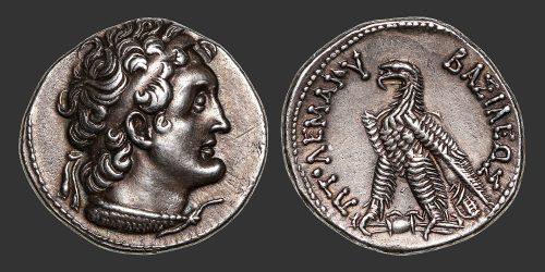 Odysseus numismatique monnaie grecque royaume Lagide Ptolémée VI tétradrachme