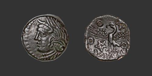 Odysseus numismatique monnaie gauloise Bituriges Cubi bronze
