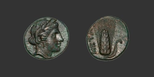 Odysseus Numismatique Monnaies Grecques Lucanie Métaponte bronze