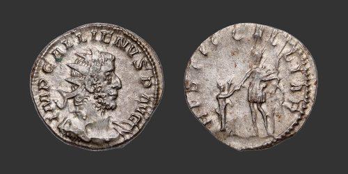 Odysseus Numismatique Monnaie Romaine GALLIEN • Antoninien