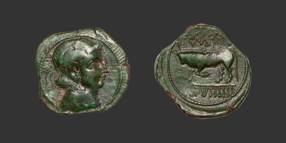 Odysseus Numismatique Monnaies Gauloises TRÉVIRES • Bronze