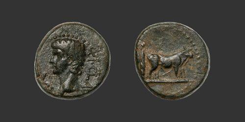 Odysseus Numismatique Monnaies Romaines Coloniales MACÉDOINE - PHILIPPI - CLAUDE • Bronze