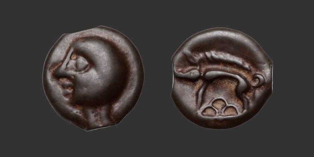 Odysseus Numismatique Monnaies Gauloises LEUQUES • Potin