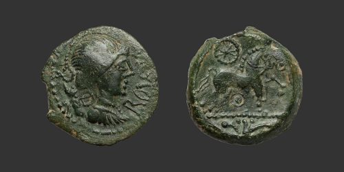 Odysseus Numismatique Monnaies Gauloises MELDES • Bronze